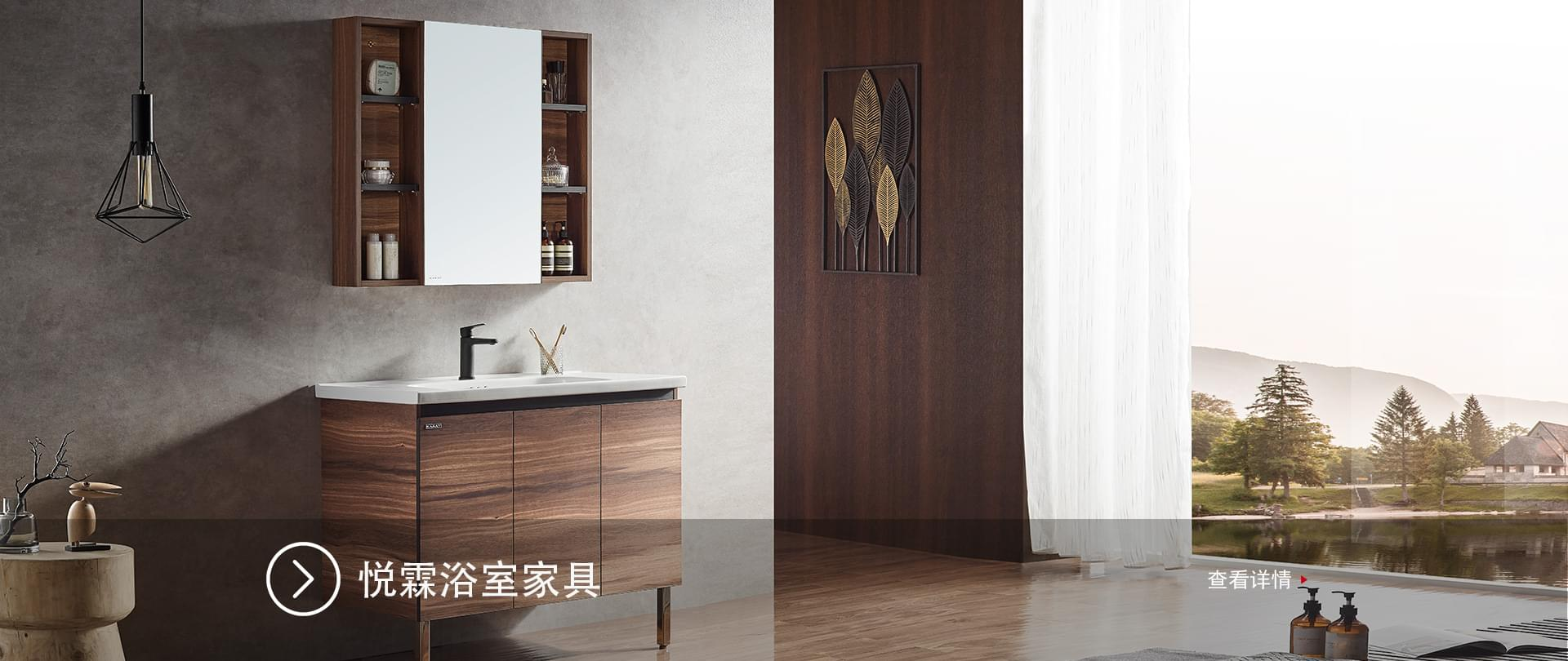 悦霖浴室家具